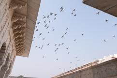 TravelIndia11